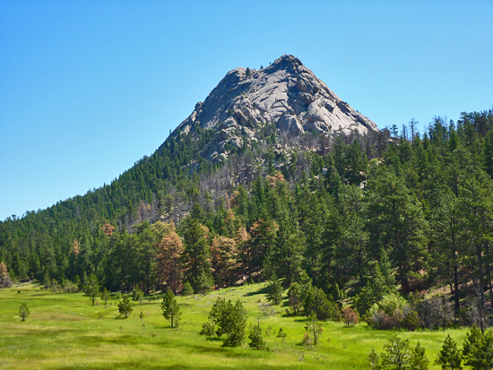 Greyrock Mountain (7,513') from the Greyrock Meadows Trail